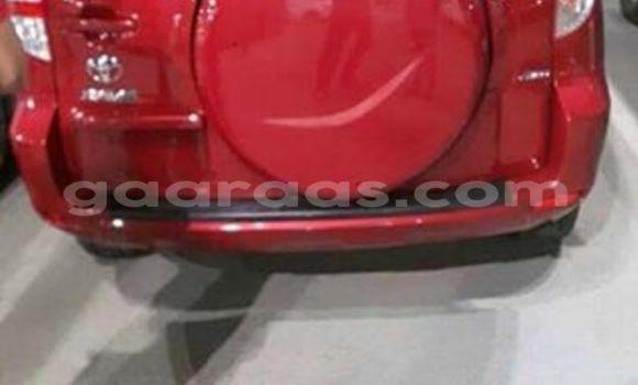 Acheter Voiture Toyota RAV4 Rouge à Gueule Tapee Fass Colobane en Dakar