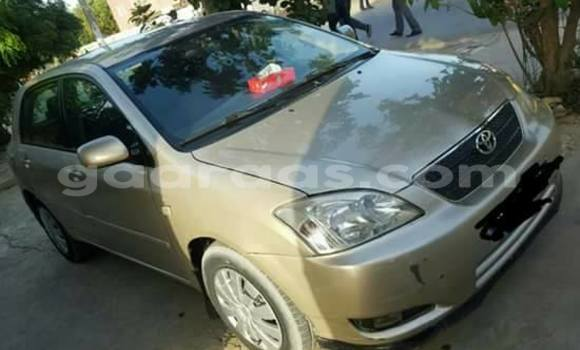 Acheter Voiture Toyota Corolla Gris à Gueule Tapee Fass Colobane en Dakar